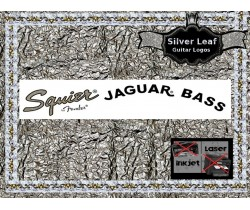 Squier Jaguar Bass Guitar Decal 16s